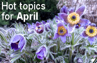 Hot Topics for April